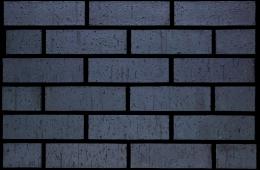 2221 Staffordshire Blue Brindle Dragface (FILEminimizer)