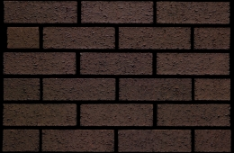 3505 Bracken Brown Rustic (FILEminimizer)