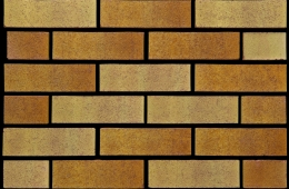 0304 Tradesman Golden Buff Multi (FILEminimizer)