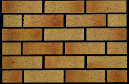 0311 Mercia Gold (FILEminimizer)