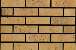 0318 Himley Dulwich Weathered Yellow (FILEminimizer)